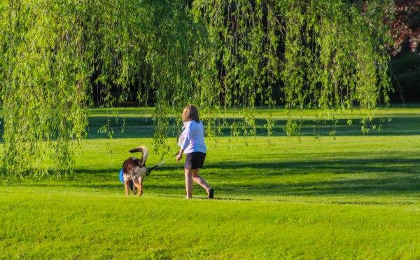 walkingthedog2 (1 of 1)
