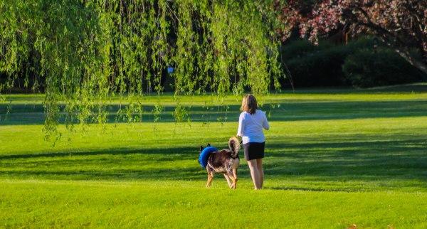 Walkingthedog4 (1 of 1)
