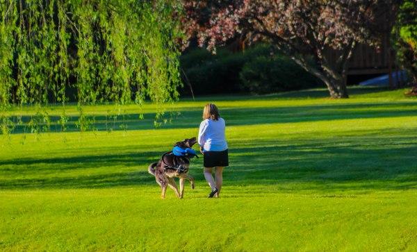 Walkingthedog5 (1 of 1)