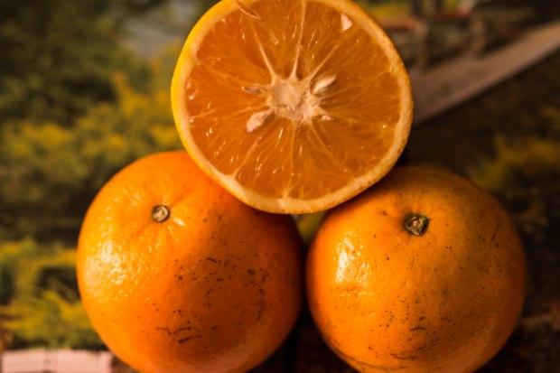 oranges4-1