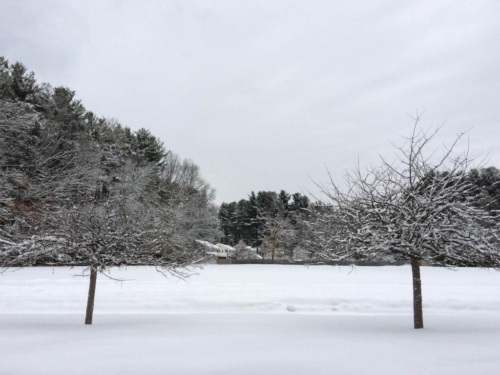 snow122-1