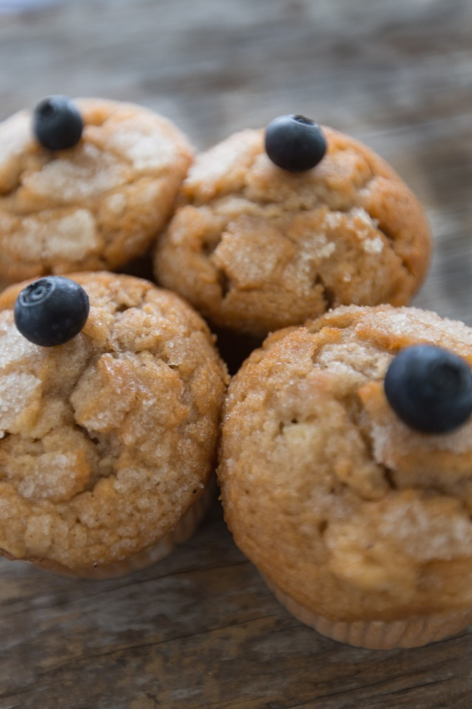 Apple spice muffins garnished with blue berries