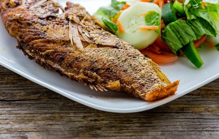 Frish fish-1