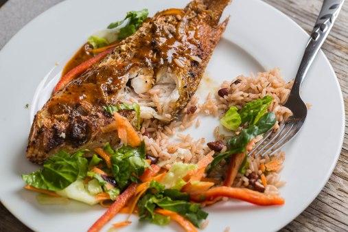 Fish dinner-4
