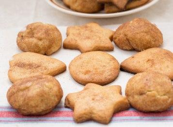 Cinnanmon sugar cookies+-2