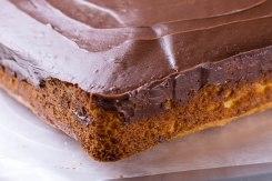 Chocolate covered lemon cake-3
