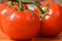 table tomatoes-3