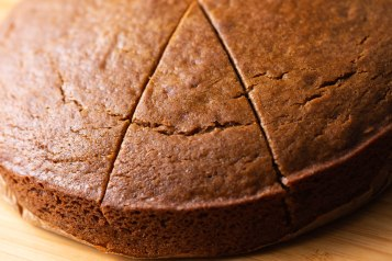 gingerbread cake (1 of 1)-4